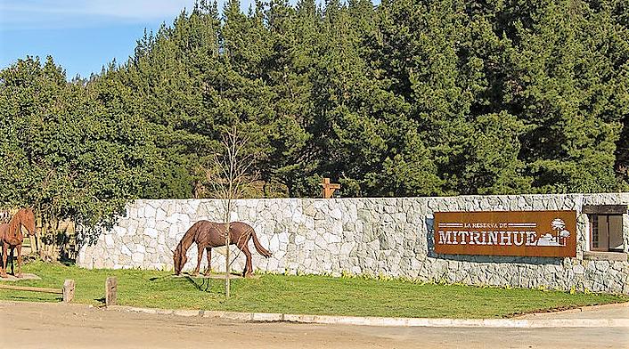 Sitio Urbanizado 790 m2  en Mitrinhue